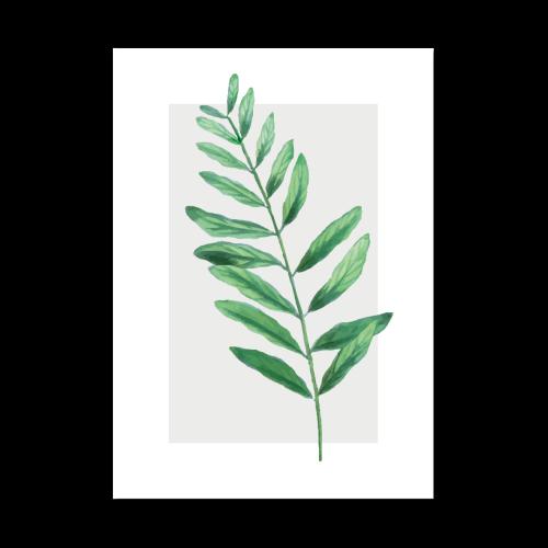 Plakat A1 Rośliny Plants Liście